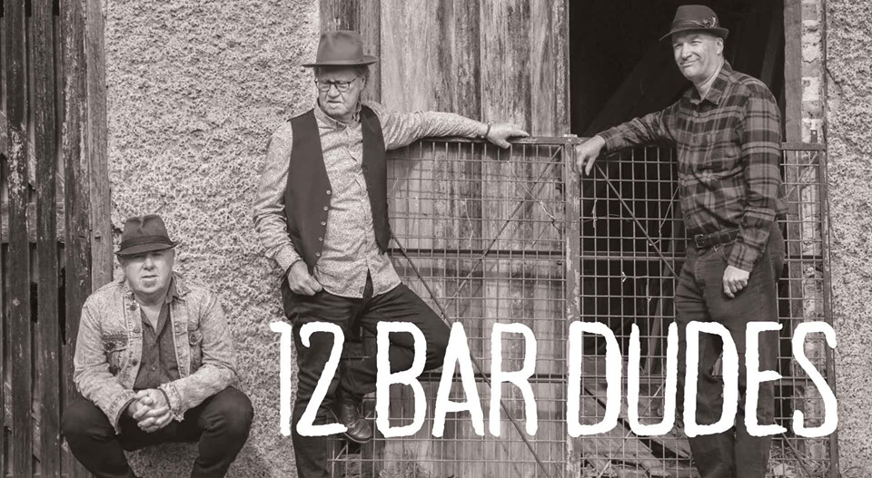 12 Bar Dudes|Saturday Night Blues | Hotel Blue