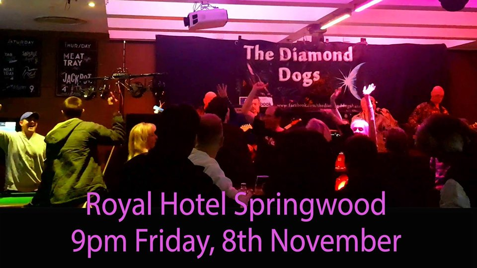 The Diamond Dogs Rockin | Royal Hotel Springwood