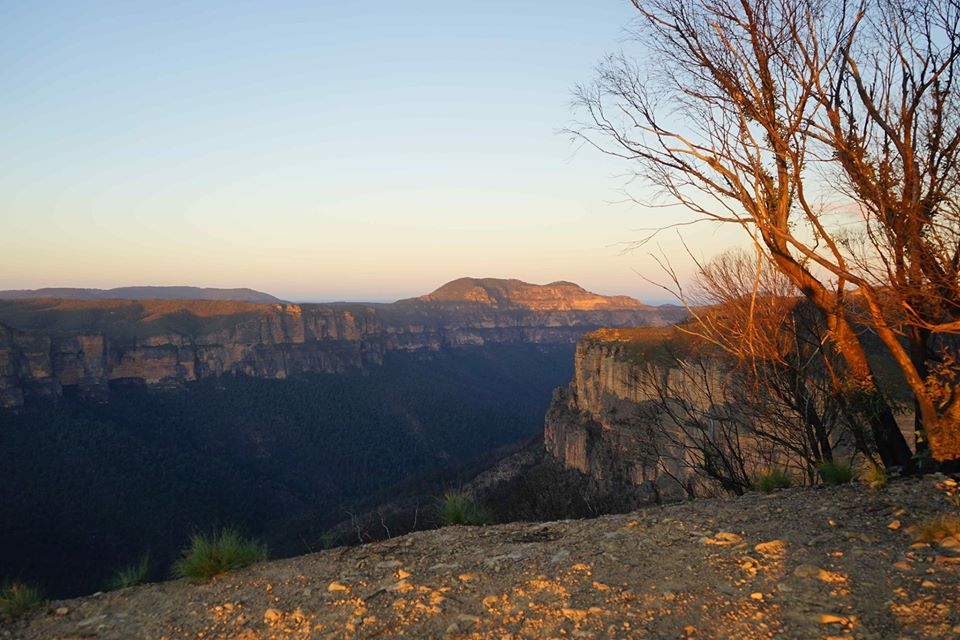 Painting the light on Mt Banks, Blue Mountains  | Creative Arts Centre Glenbrook