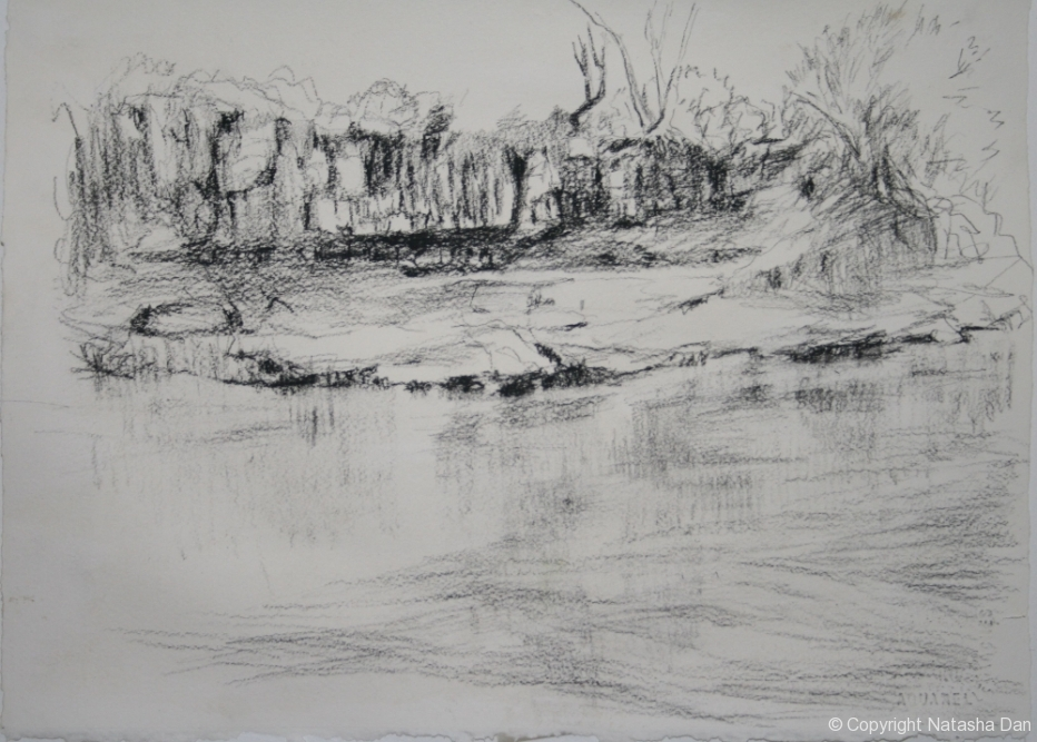 Murray-River-Bank-charcoal-38x28-cm