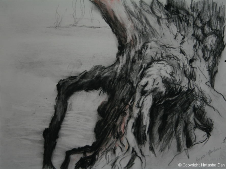 River-Gum-2-charcoal-38x28-cm